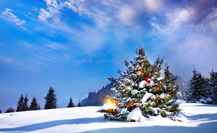 russischer Weihnachtsbaum im Schnee