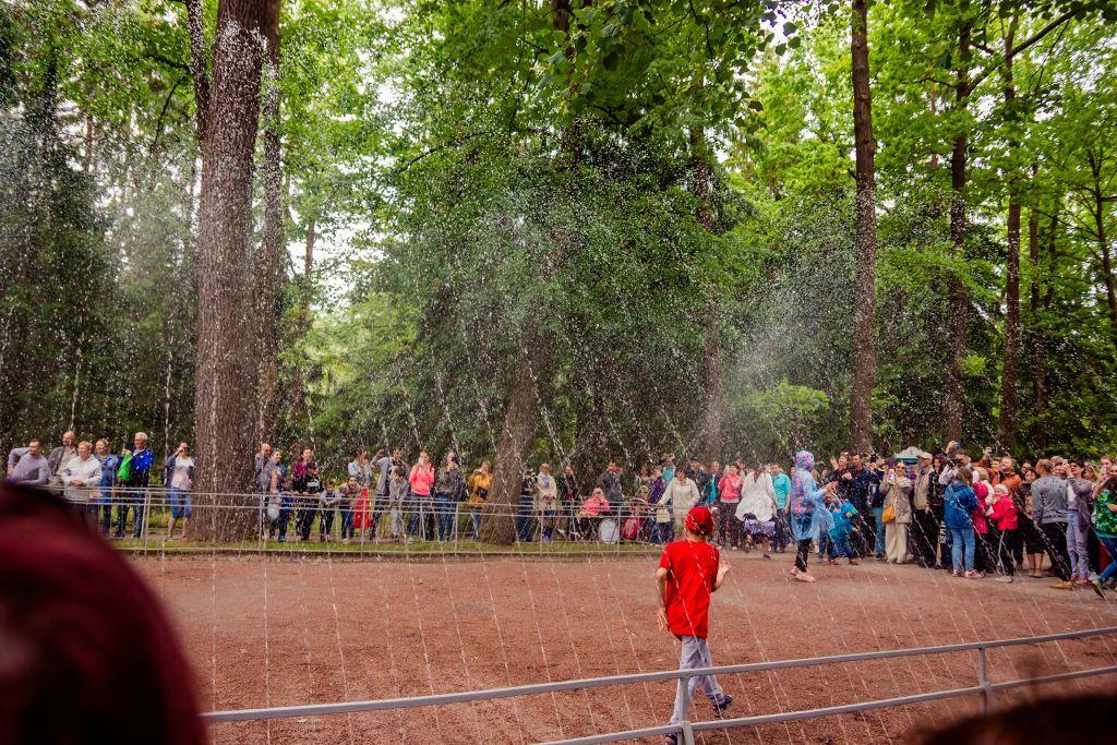 "Springbrunnen ""Wasserstraße"" im unteren Park des Schlosses Peterhof bei Sankt Petersburg"