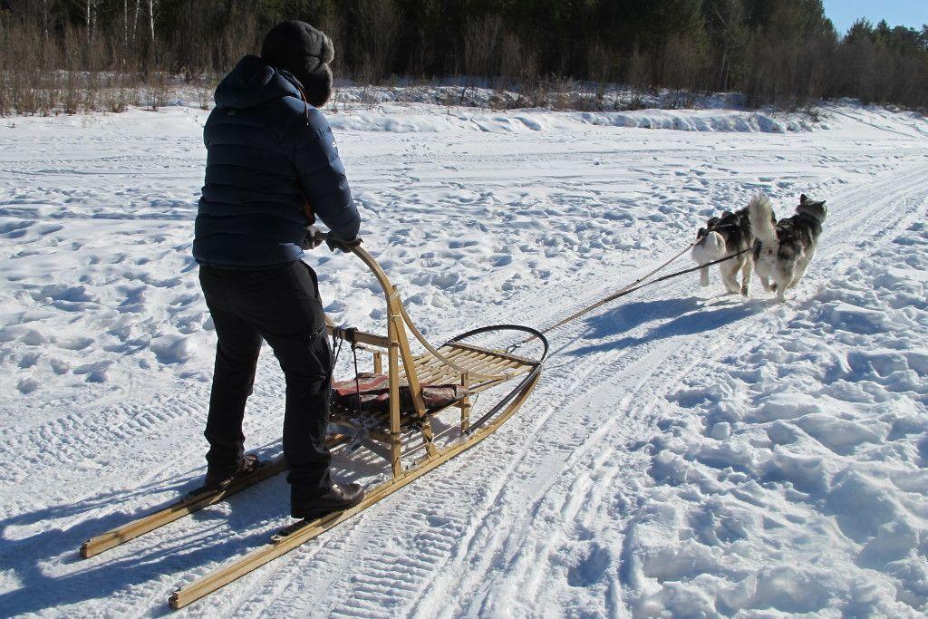 Hundeschlitten Fahrt am Baikalsee in Sibirien